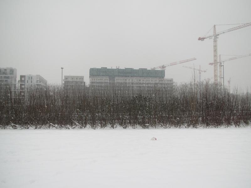 Le quartier sous la neige Neige-bb-8